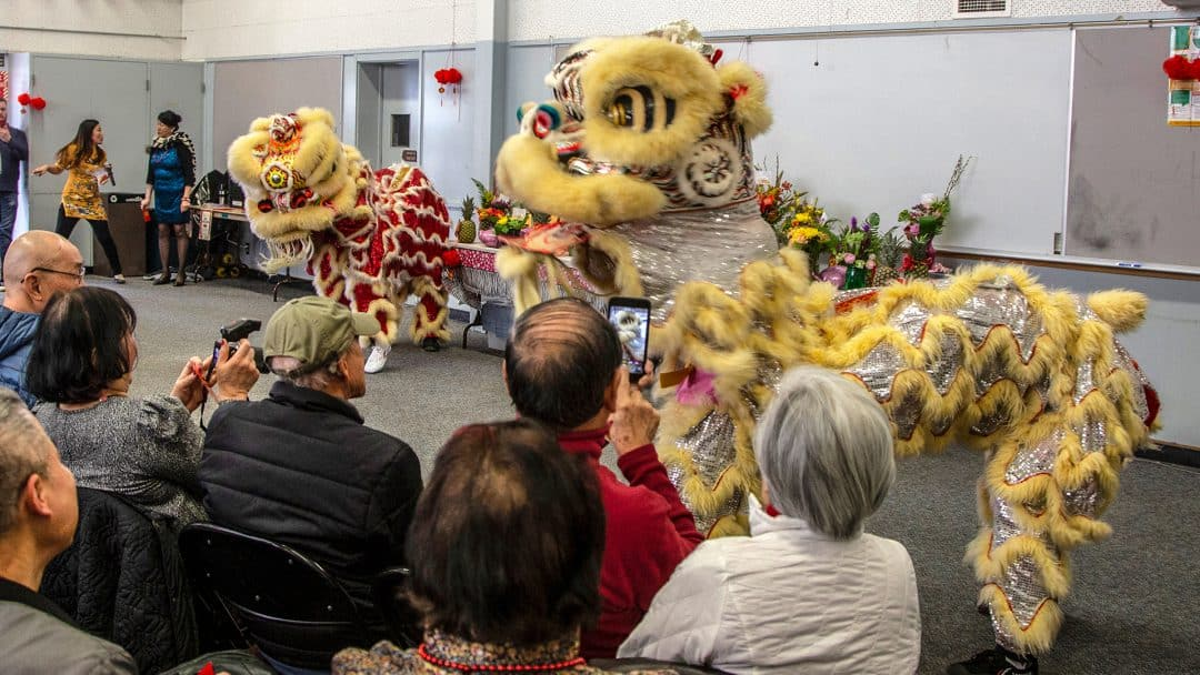 Chinese Dragon performance for Lunar New Year 2019
