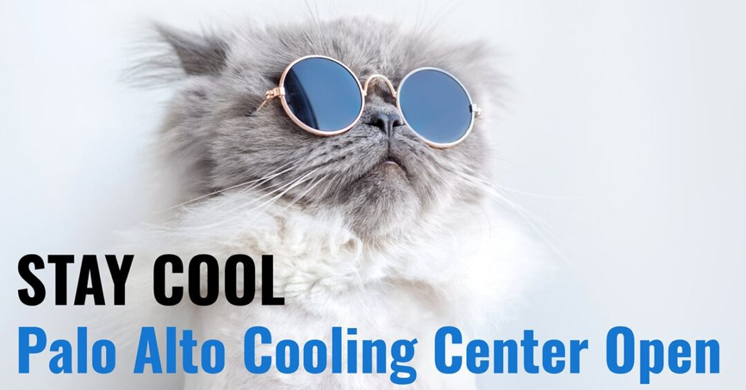 "cat wearing reflective sungalsses with the words ""Stay Cool: Palo Alto Cooling Center Open"" overlaid"