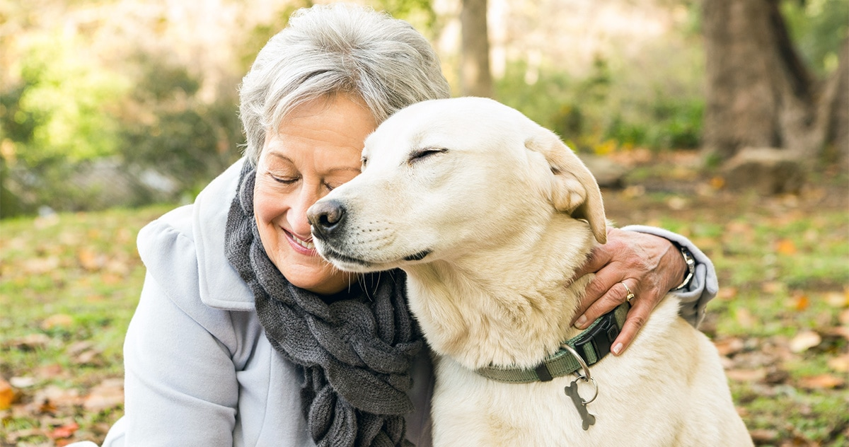 senior woman and her senior yellow lab in a park in autumn